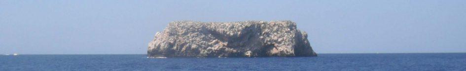 cropped-2011-CABRERA-533_1.jpg